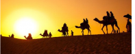 《沙漠骆驼》火了,人这辈子,最怕突然听懂一首歌